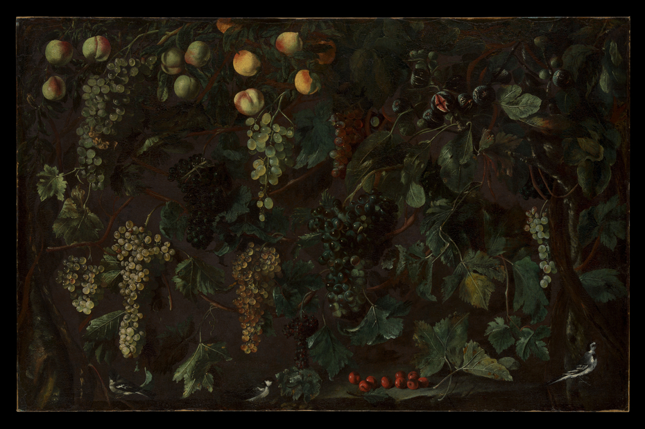 Grape Vines and Fruit, with Three Wagtails