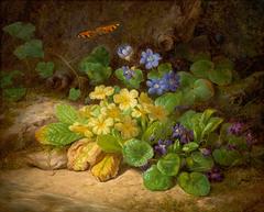 Kleines Blumenstück (Alpenblumen)