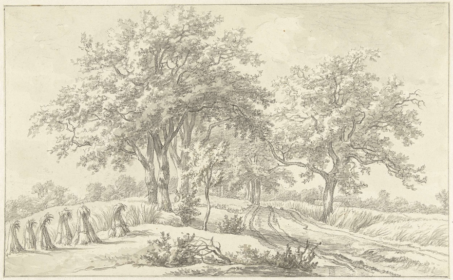 Landschap met schoven in het Braamse in het Hanoverse
