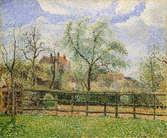 Pear Trees in Bloom at Eragny, Morning
