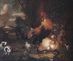 Poultry and Guinea Pigs