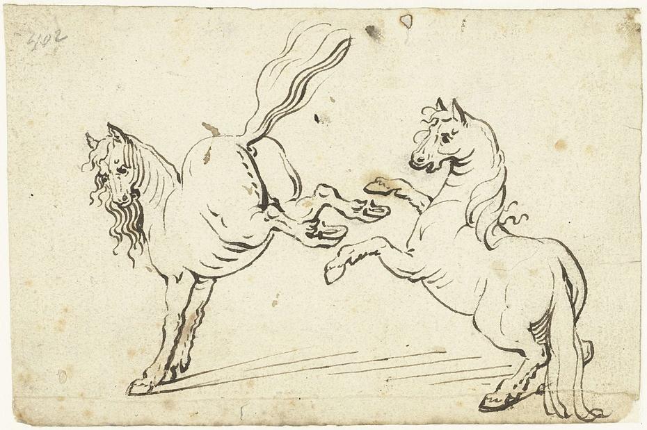 Steigerend en een galopperend paard