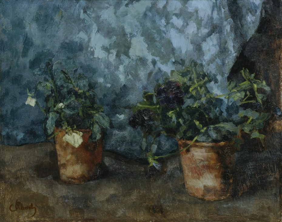 Still life with flower heads