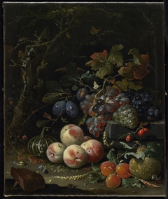 Still Life with Fruits, Foliage and Insects