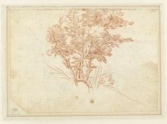 Studie van een bomengroep