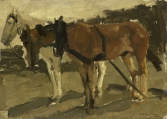 A Brown and a White Horse in Scheveningen
