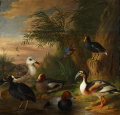 Birds in a Landscape