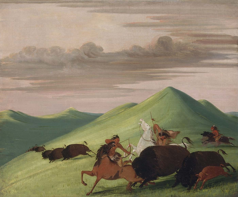 Buffalo Chase, Bull Protecting a Cow and Calf