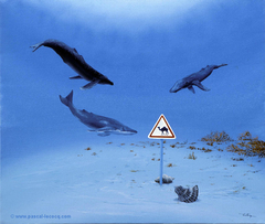 CHAMEAUX-BALEINES ET DROMADAIRES - Double humpback whales and camels - by Pascal