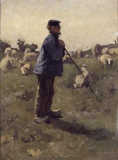 De schaapherder