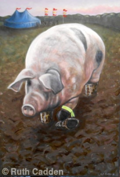 Festival Pig