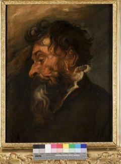 Head of a Bearded Man in Profile