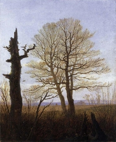 Landscape in the early spring