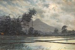 Moonlight over the Javanese paddy fields