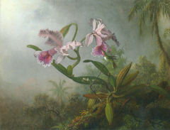 Pink Orchids and Hummingbird on a twig