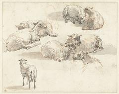 Schetsblad met groepen schapen