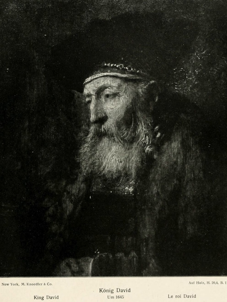 Study of an old man (King David)