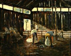 untitled (Shearing shed, Kawhia)