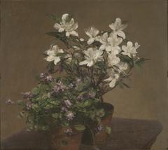 Violettes et azalées (Violetas y azaleas)