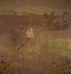 Walking in the Vineyard