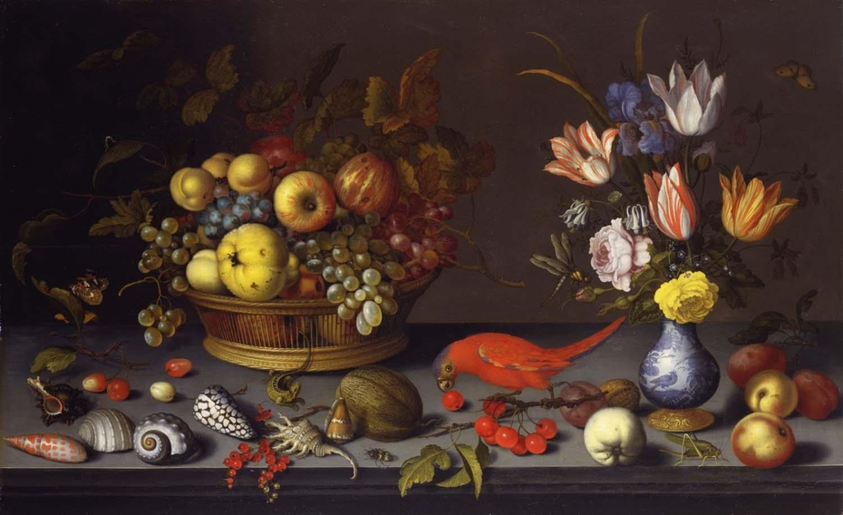 Fruit, Flowers, and Shells