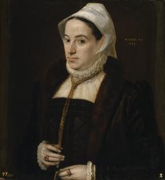 Portrait of a Woman aged 35