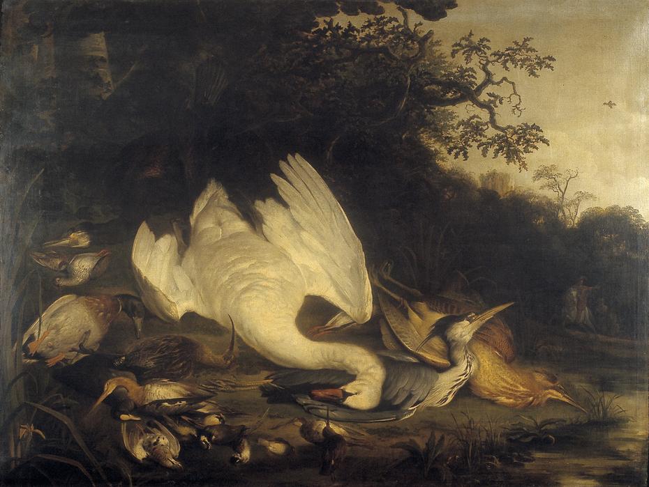 Zwaan, aascholver en andere dode vogels in een landschap