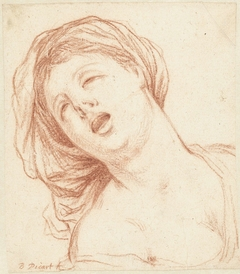 Borstbeeld van een schreeuwende vrouw met hoofddoek