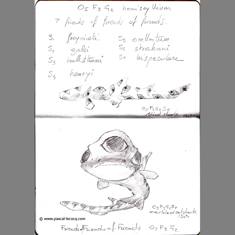 Carnet Bleu: Encyclopedia of…shark, vol.VII p08 by Pascal