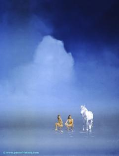 CRINIERE D'HIPPOLYTE - Hippolithe's mane - by Pascal
