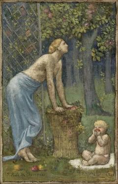 Recolte des Pommes