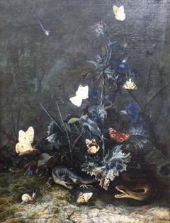 Sous-bois avec papillons autour d'un chardon