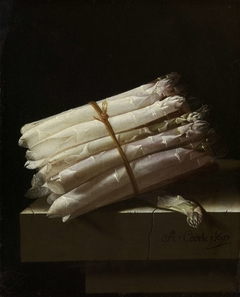 Still Life with Asparagus