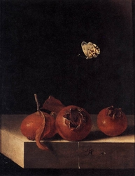 Still life with three medlars and a butterfly