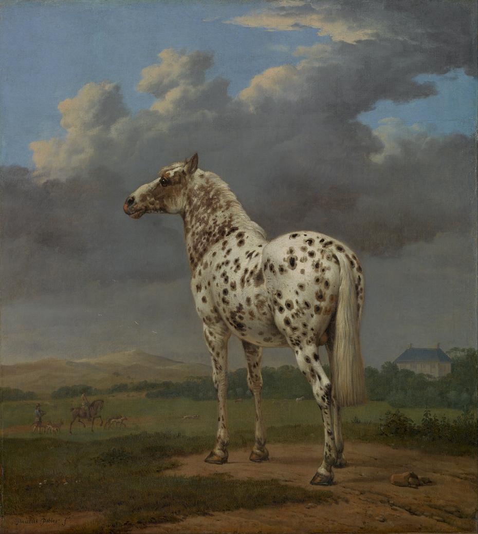 """The """"Piebald"""" Horse"""