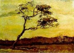 A Wind-Beaten Tree
