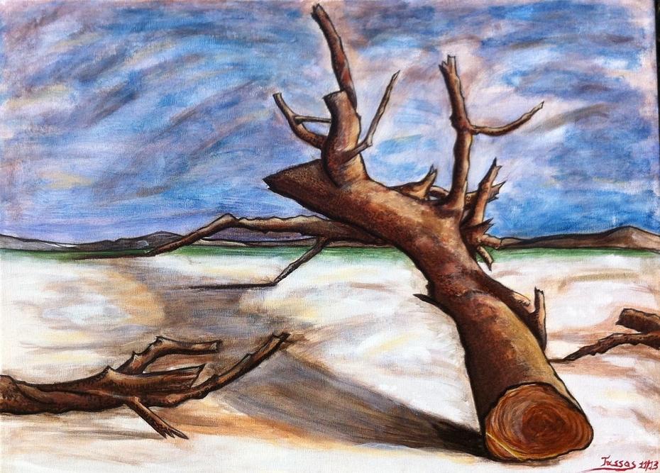 Dead Tree on the beach