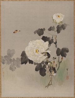 Roses, Young Bird and a Butterfly
