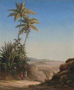Paysage à St. Thomas (Landscape, St. Thomas)