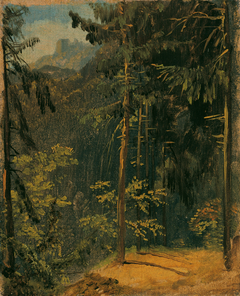 Waldweg im Harz