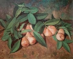 Wax-Apples