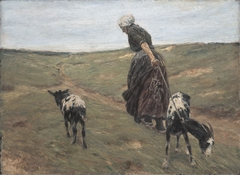 Woman with goats in the dunes