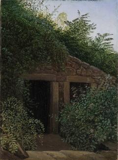 An Overgrown Mineshaft