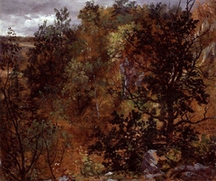 Autumn Woods near Maxen