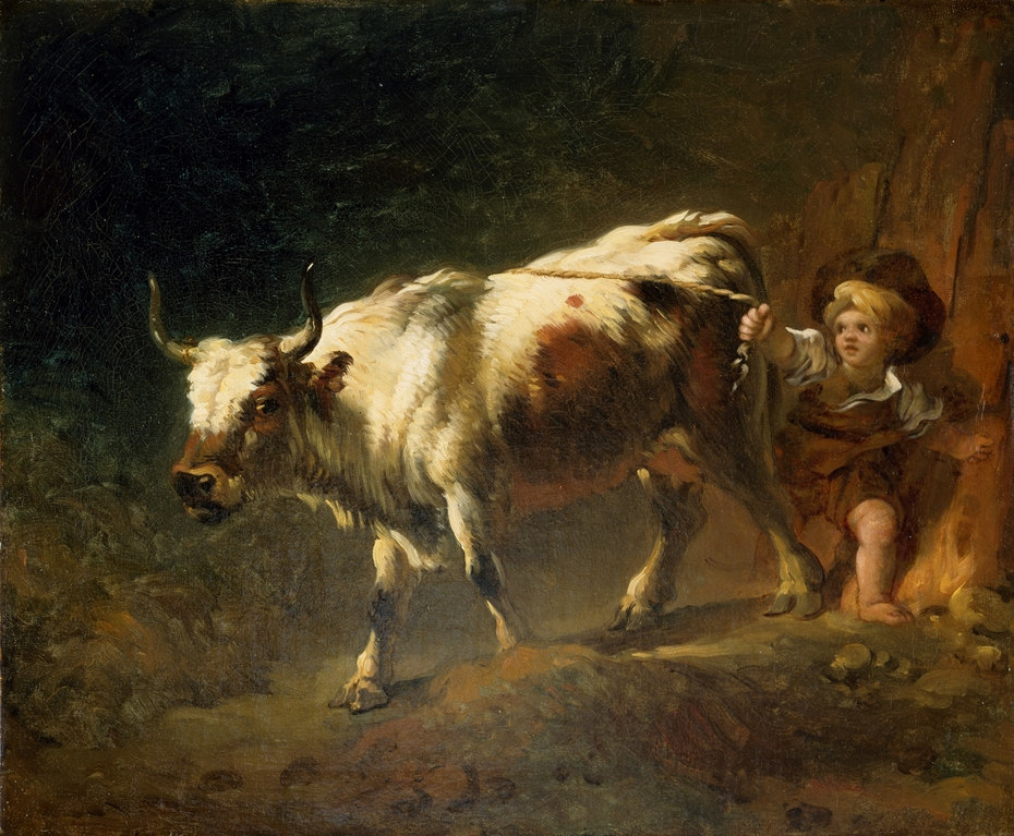 Boy Attempting to Restrain a Cow by a Rope