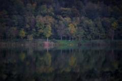Dream of Bosnia in erdevik's night - autumn 4th