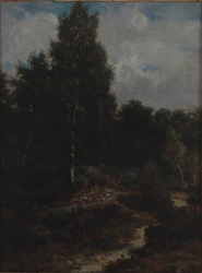 Fontainebleau Woods