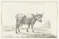 Lopende koe, naar rechts