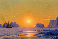 Off the Greenland Coast under the Midnight Sun