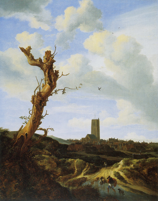Old elm tree with view of Egmond aan Zee